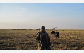 Photo of a herder standing in front of his family's encampment and cattle.