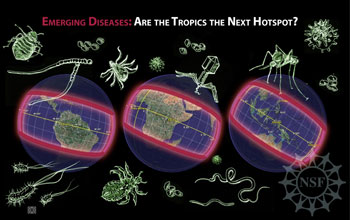 Illustration of bugs with map of tropics; text: Emerging diseases: Are the tropics the next hotspot?