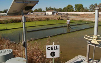Image of a wetland testbed where ERC research will see how natural and engineered systems interact.