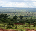 Photo of agricultural land and savannah in Zambia with hills on horizon.