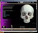 montage of images of UTCT Facility, views of human skull specimen, eSkeletons screen captures