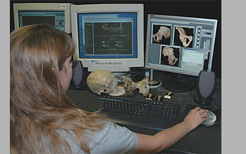 photo of UTCT lab assistant, reviewing anatomy of the human pelvis for correct labeling