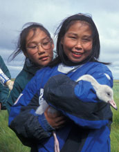 Photo of two Eskimo students holding a tundra swan.