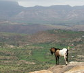 Photo of highlands of Ethiopia