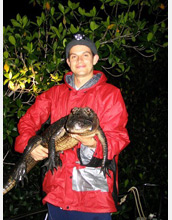 Photo of scientist Adam Rosenblatt holding a young American alligator.