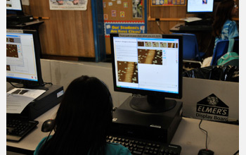 Photo of fourth-graders using Evolution Readiness software.