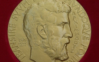 The 14-carat gold Fields Medal