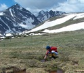 Scientists collect water samples during snowmelt season at the Saddle site at Niwot Ridge.