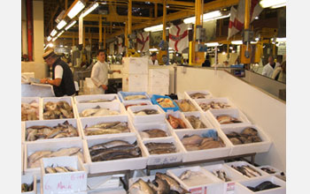 Photo of Billingsgate Market, the largest U.K. fish market.