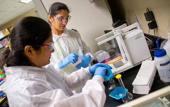Students prepare solutions in a  lab at Austin Community College
