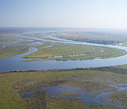 When floodplains go dry, disease outbreaks occur as the waters recede into the main river channel.