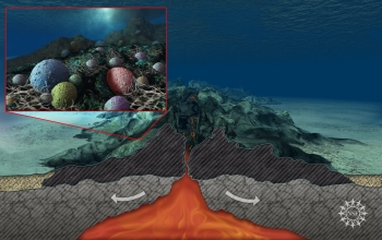 Scientists have found that rocks beneath the seafloor are teeming with microbial life.