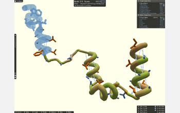 Screenshot of showing parts of protein structure that can be moved around by Foldit players.