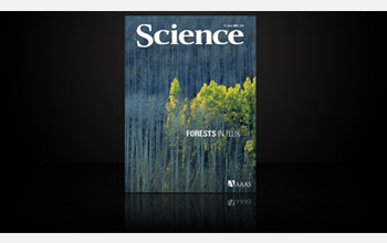 Cover of the June 13, 2008 issue of Science
