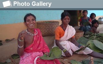 Photo of women sewing leaves and the words Photo Gallery.