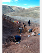Photo of scientists looking for fossil evidence of Tiktaalik on Ellesmere Island, Canada.