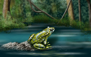 painting of a frog sitting next to water
