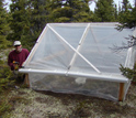 Biologist Steven Allison in Alaskan forest, maintaining the greenhouse warming experiment.