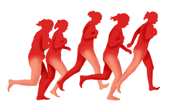 Comparison of body mass movement in the human walk and run.