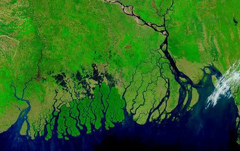 A new NSF Coastal SEES award addresses sustainability of the Ganges-Brahmaputra Delta.