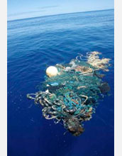 Photo of a large net tangled with plastic in the garbage patch.
