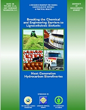 Report: Breaking the Chemical and Engineering Barriers to Lignocellulosic Biofuels