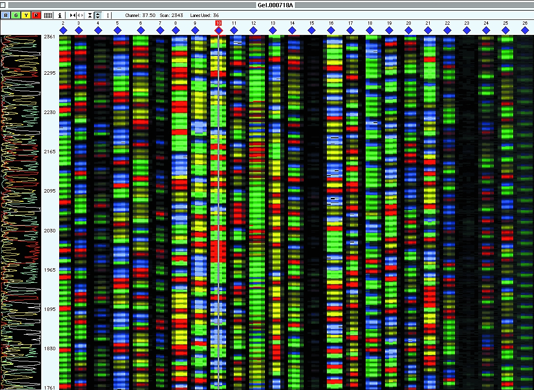dna sequencing of cancer genes essay Should we sequence the dna of every cancer cutting-edge cancer drugs already require a genetic test editor for biomedicine for mit technology review.