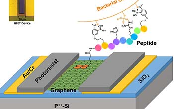 graphene field effect transistor
