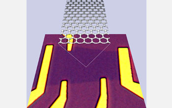 Optical microscope image of the graphene device.