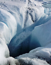 Water flowing from the surface to the bed of the Greenland ice sheet.