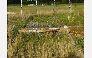 A bench allows scientists to take samples from the center of an experimental plot.