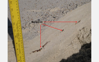 Photo showing a close-up view of oil buried under Gulf coast sands.