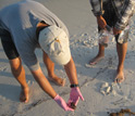 Photo of Ping Wang and research team collecting samples of oil uncovered along Gulf beaches.