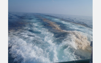 A wake of oil is left behind an oceanographic research vessel.
