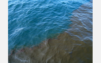 Marine scientists are working to better understand oil dispersal in the Gulf of Mexico.