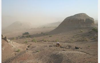 Photo of Jonah Choiniere excavating a sediment block in a sandstorm in China.