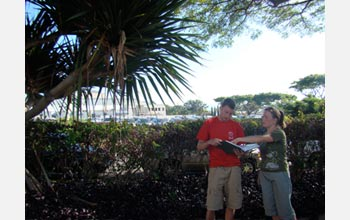 Photo of Joshua Atwood and Danielle Frohlich using a key to identify a non-native palm species.