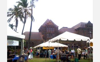 Photo of a festival at Honolulu's Bishop Museum that promotes the use of native Hawaiian plants.