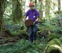 Biologist Mark Harmon in the forest holding a piece of dead tree