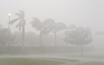 Irma's gales swept across South Florida in this image taken near Naples, Florida.