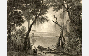 Image of The Lake of the Dismal Swamp by John Gadsby Chapman, 1842.