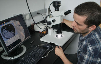 Scientist Leo Pena analyzes fossil plankton shells on a computer to reconstruct ocean circulation.
