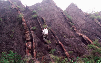 Photo of researcher Noah Planavsky on a black shale exposure in China.