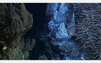 Photo of a hydrothermal vent.
