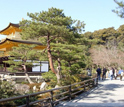 Photo of Kyoto's Kinkakuji Temple.