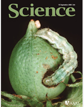 Cover of September 19, 2008, issue of Science magazine.