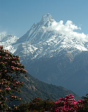 Photo of mountain peak, Machupuchare in the Himalaya in central Nepal