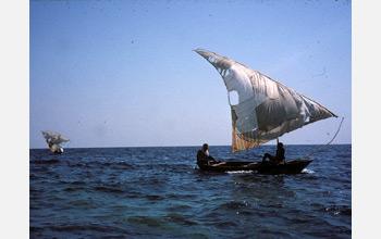 Local fishermen troll the waters of Lake Tanganyika catching sardines.