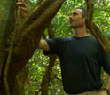 Image of ecologist Stefan Schnitzer who studies lianas or woody vines in tropical forests.