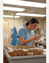 Photo of Susan Alford in a lab.